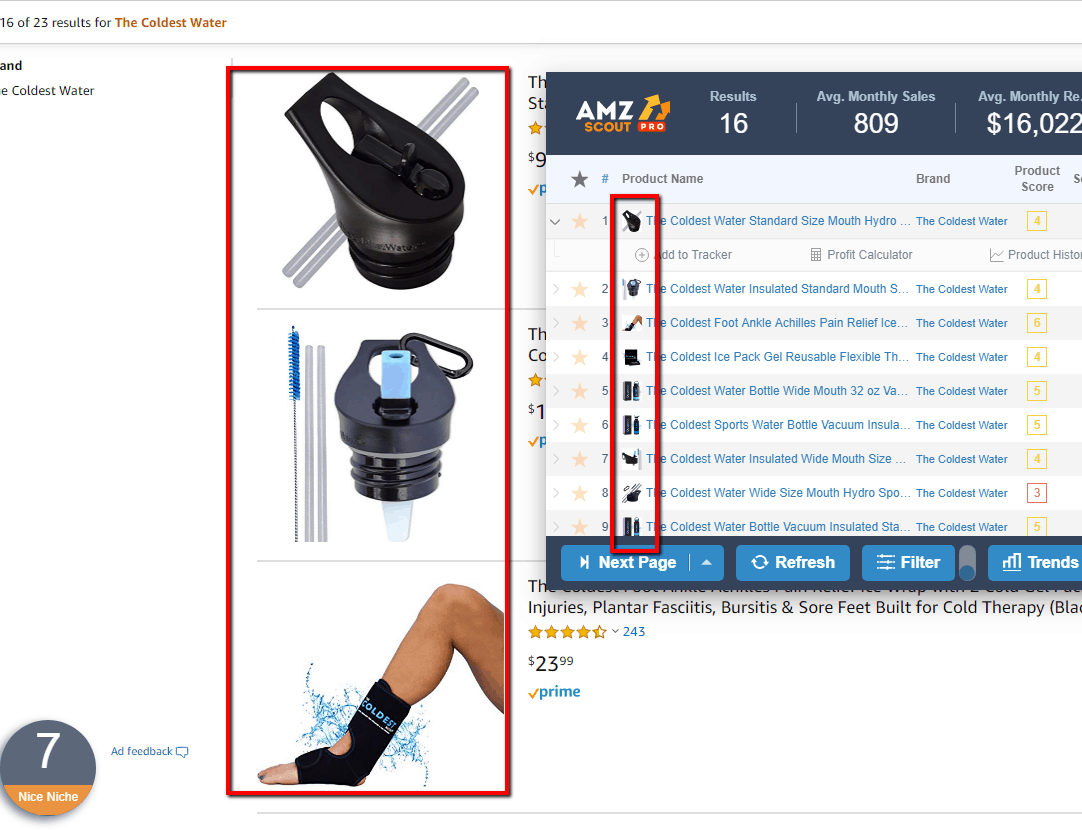 Amazon research tools on competitor Amazon Storefront