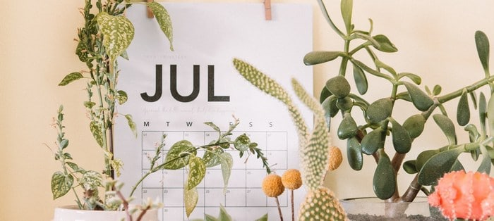 July FBA monthly update at $200K 2